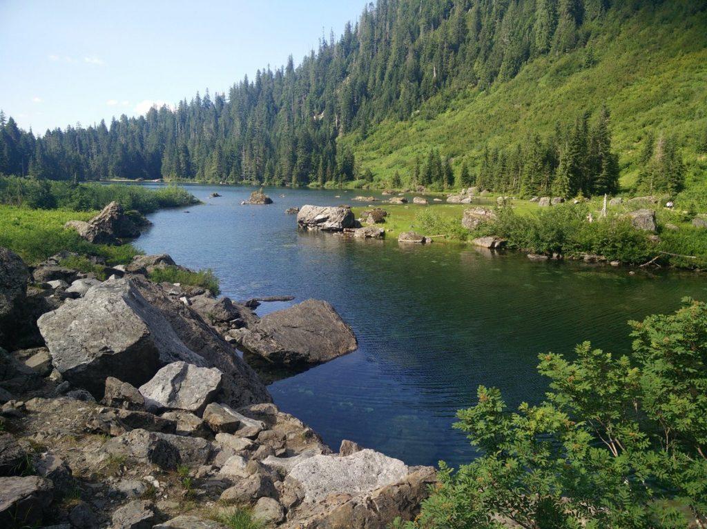Mountain Stream - Environment