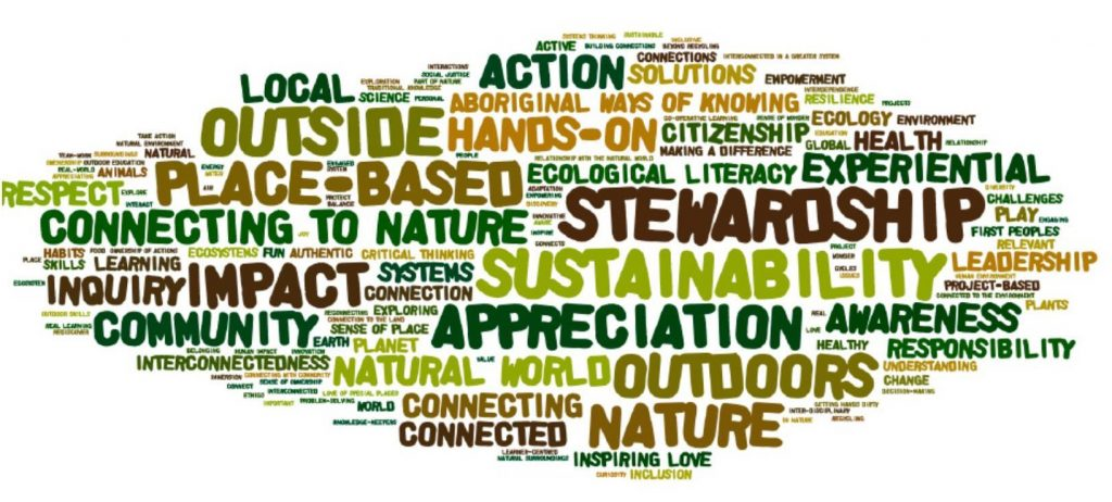 How Teachers describe Environmental Education - Local Action Appreciation Sustainability Stewardship Nature