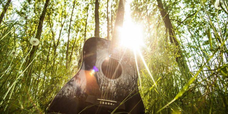 Guitar in Woods
